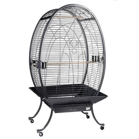 Bird Cages (Black)