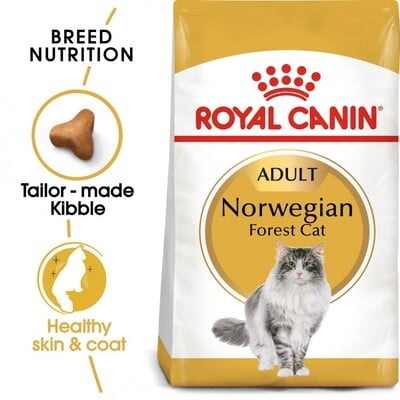 Royal Canin Feline Breed Nutrition Norwegian Forest Cat 2KG
