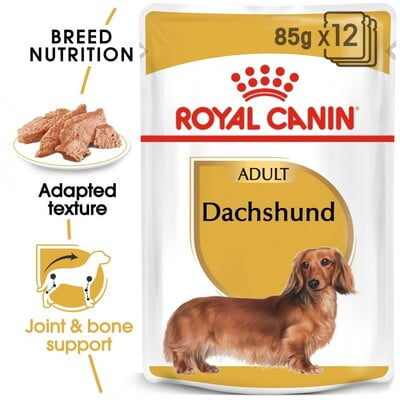 Royal Canin Wet Food BHN Dachshund Adult 12x85G(pouches)
